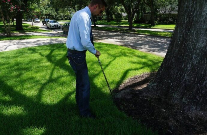 Arborist-Consultations-Myrtle Beach's Best Tree Care Services-We Offer Tree Trimming Services, Tree Removal, Tree Pruning, Tree Cutting, Residential and Commercial Tree Trimming Services, Storm Damage, Emergency Tree Removal, Land Clearing, Tree Companies, Tree Care Service, Stump Grinding, and we're the Best Tree Trimming Company Near You Guaranteed!