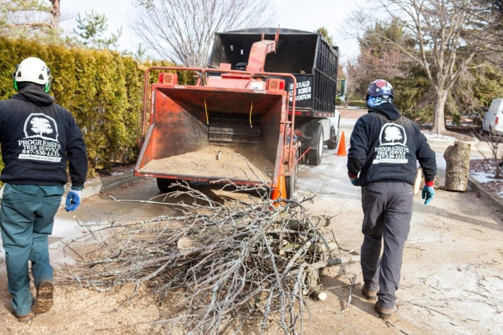 Commercial-Tree-Services-Myrtle Beach's Best Tree Care Services-We Offer Tree Trimming Services, Tree Removal, Tree Pruning, Tree Cutting, Residential and Commercial Tree Trimming Services, Storm Damage, Emergency Tree Removal, Land Clearing, Tree Companies, Tree Care Service, Stump Grinding, and we're the Best Tree Trimming Company Near You Guaranteed!