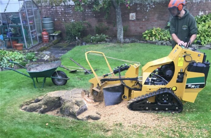 Stump-Removal-Myrtle Beach's Best Tree Care Services-We Offer Tree Trimming Services, Tree Removal, Tree Pruning, Tree Cutting, Residential and Commercial Tree Trimming Services, Storm Damage, Emergency Tree Removal, Land Clearing, Tree Companies, Tree Care Service, Stump Grinding, and we're the Best Tree Trimming Company Near You Guaranteed!