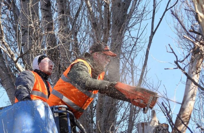 Socastee-Myrtle Beach's Best Tree Care Services-We Offer Tree Trimming Services, Tree Removal, Tree Pruning, Tree Cutting, Residential and Commercial Tree Trimming Services, Storm Damage, Emergency Tree Removal, Land Clearing, Tree Companies, Tree Care Service, Stump Grinding, and we're the Best Tree Trimming Company Near You Guaranteed!